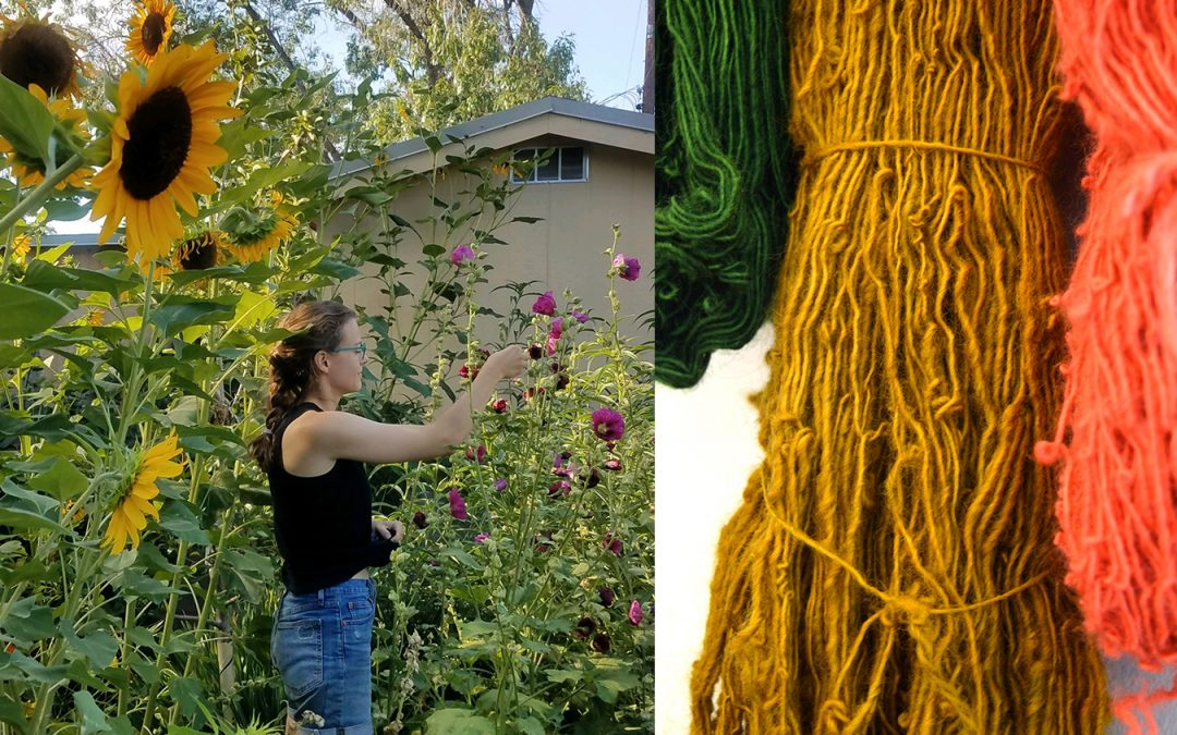 Natural Dyes, From Your Kitchen to New Mexican Plants with Molly Zimmer